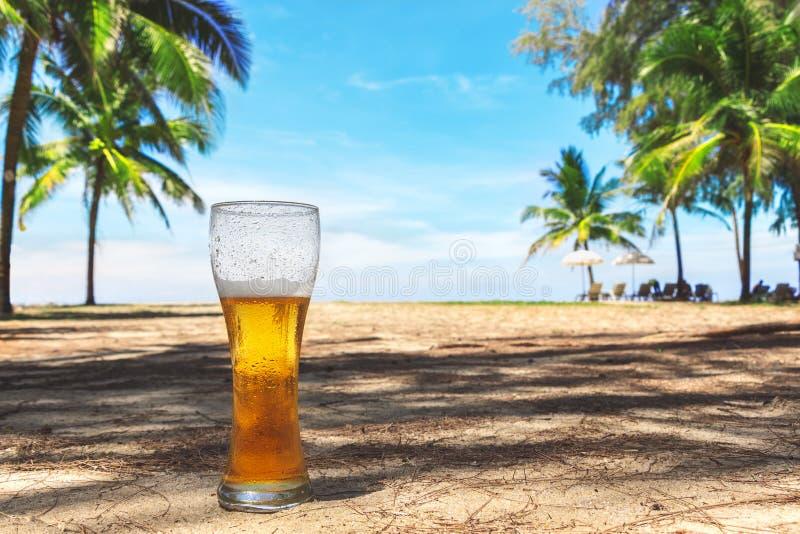 Misted exponeringsglas av kallt öl på sanden på bakgrunden av gröna palmträd, blå himmel och den tropiska ön för havskust Himla-  arkivfoto