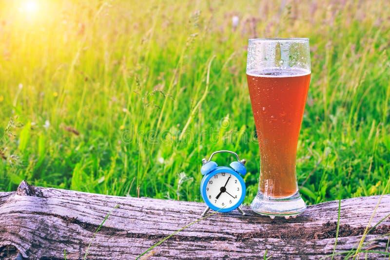 Mistedglas koud bier en een wekker bij de achtergrond van groen gras bij zonsondergang Tijd om een onderbreking te nemen en bier  royalty-vrije stock afbeelding