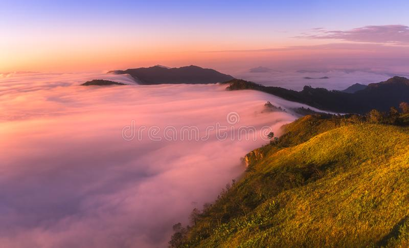 Misten på den Phu Chifa i morgonen Chiang Rai Thailand royaltyfri fotografi