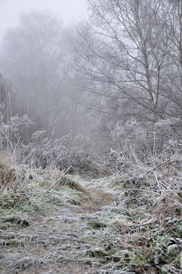 Misterio del invierno imagenes de archivo