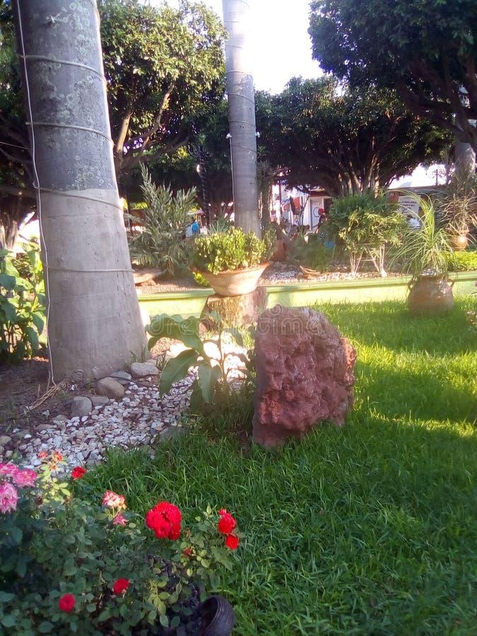 Mistero del giardino in un'occhiata fotografie stock
