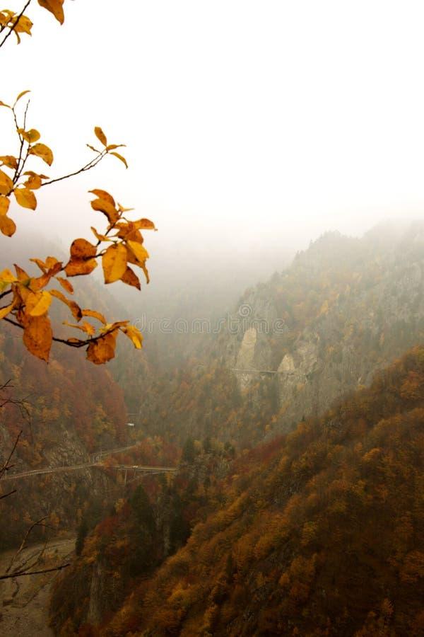 Download Mistic βουνά στοκ εικόνες. εικόνα από περιβάλλον, δάσος - 1536138