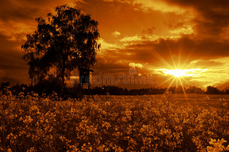 Mistic landscape. View of landscape sunset and mysterious atmosphere stock images