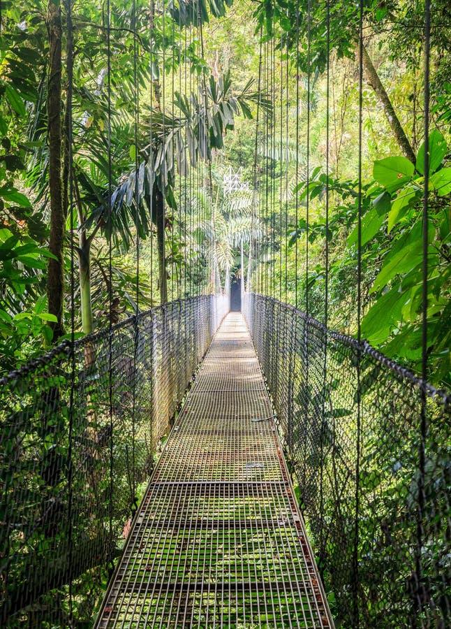 Mistico Arenal Wiszących mostów park obraz royalty free