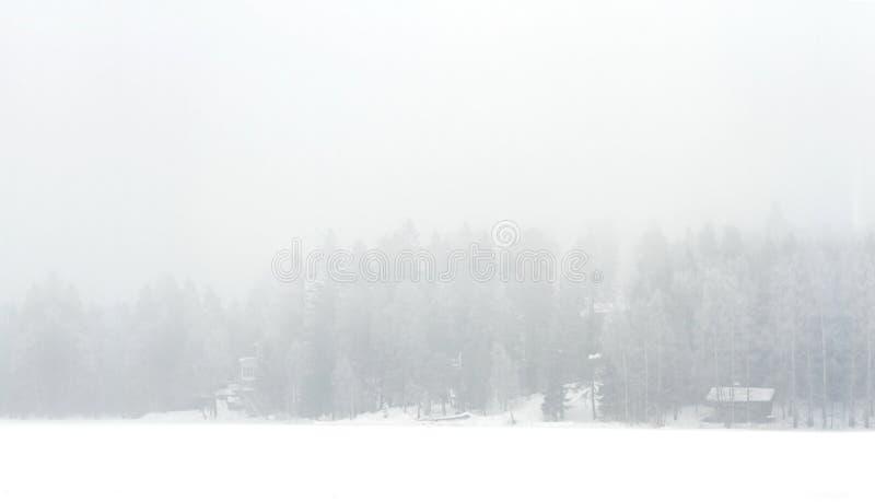 Mistig de winterlandschap van meerkust stock foto