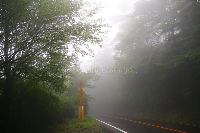 Mistig landschap op de stijging tot Ebino-kogenhooglanden langs een weg, Kyushu, Japan stock afbeeldingen