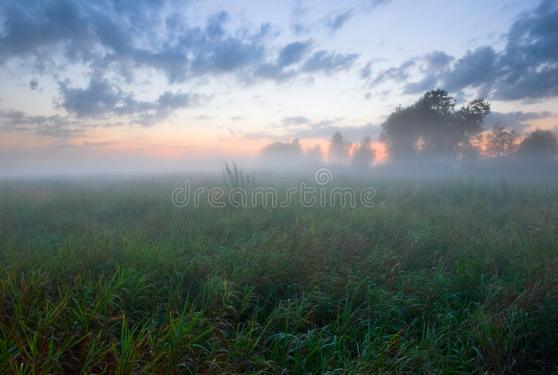 Mistig zonsonderganggebied van Rusland stock fotografie
