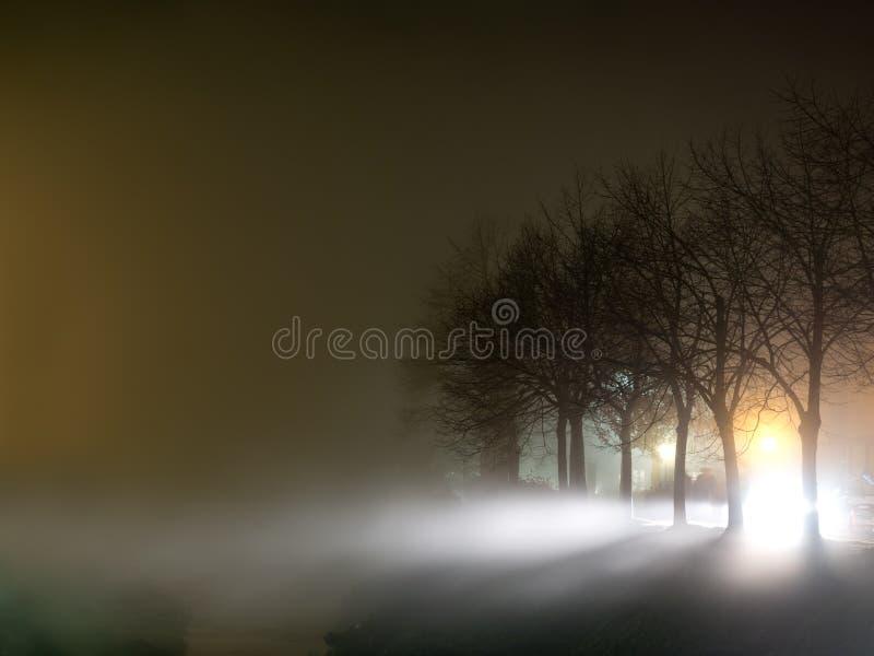 Mistige avond door de rivier, met bomen Wervelende mist, atmosferische scène royalty-vrije stock fotografie