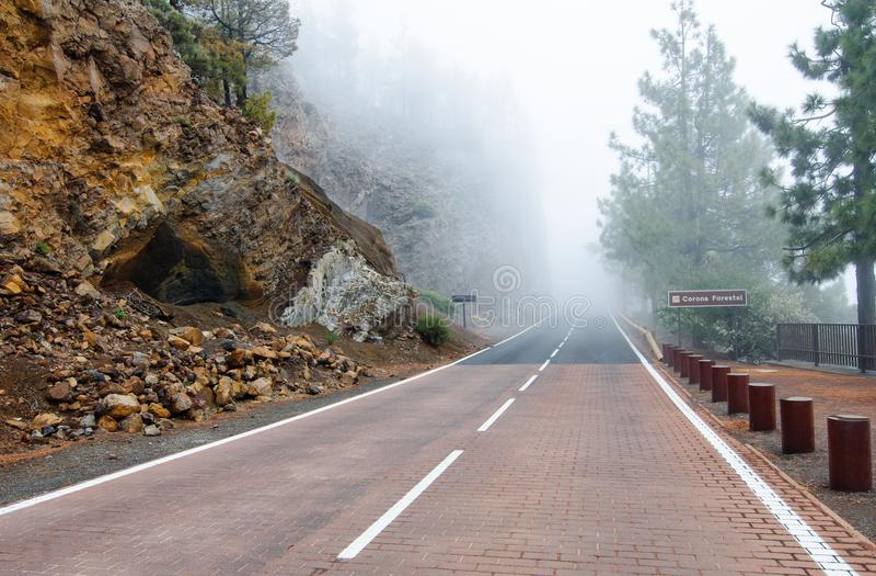 Mistige bergweg in het Natuurreservaat van Corona Forestal Tenerife, Canarische Eilanden, Spanje royalty-vrije stock afbeelding