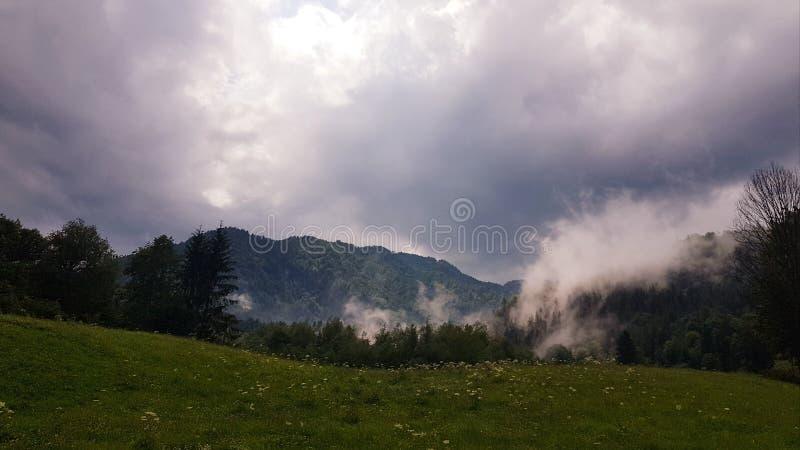 Mistige dag door de bergen stock afbeelding