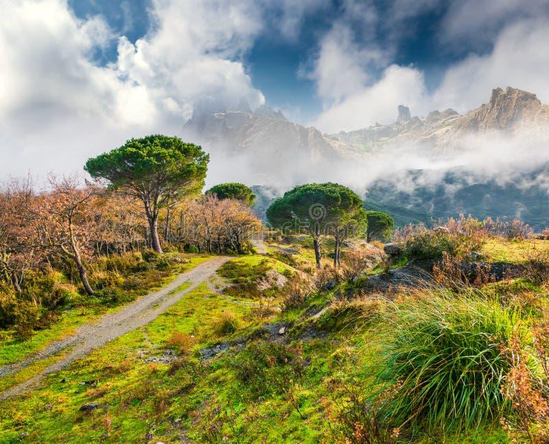 Mistige de lenteochtend in de Siciliaanse bergen royalty-vrije stock fotografie