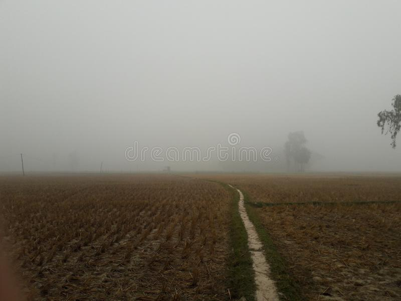 mistige de winterkoude stock afbeelding