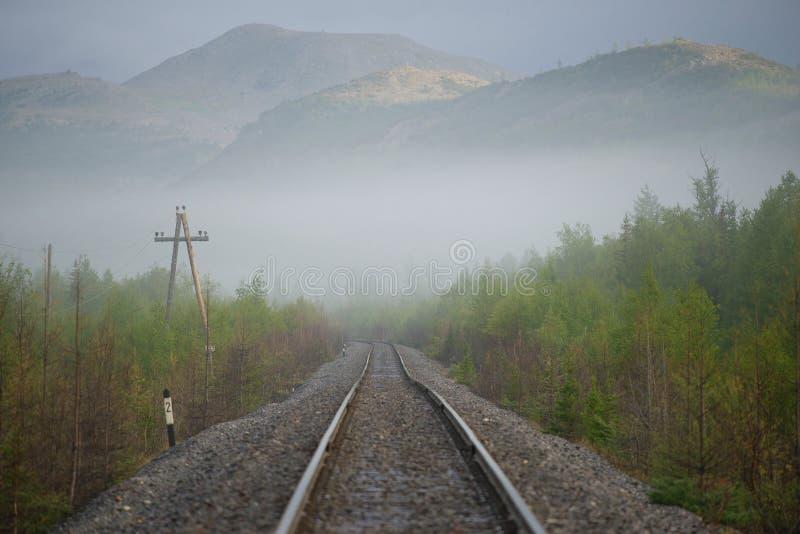 Mistige de zomerochtend op de spoorweg van Vorkuta - Labytnangi- Polaire Ural, Rusland stock afbeeldingen