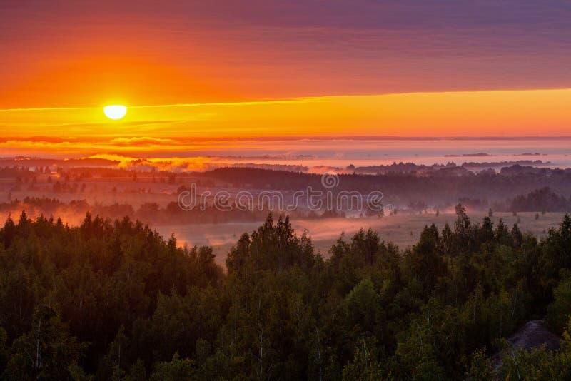 Mistige flatlandrivieroever bij gouden de zomerzonsopgang royalty-vrije stock fotografie