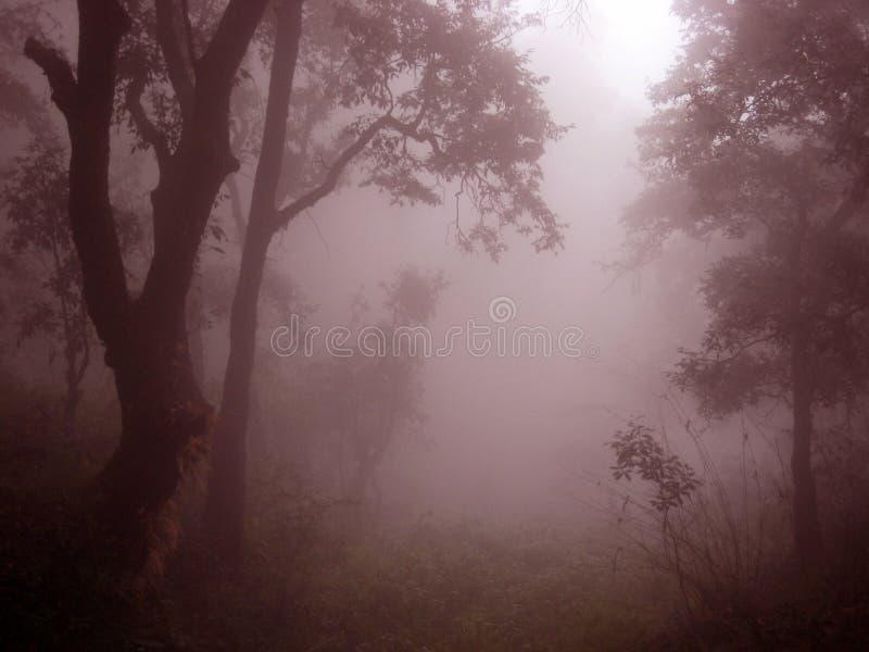 Mistige nevelige Himalayagebergte berg India stock afbeelding