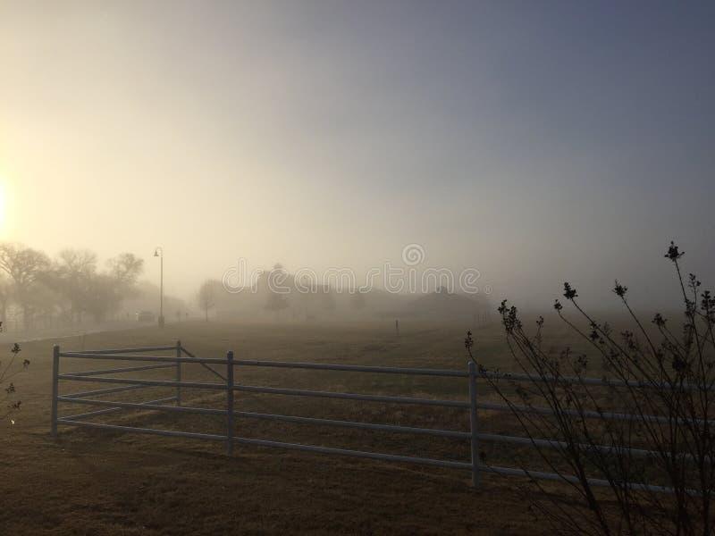 Mistige ochtend stock afbeelding