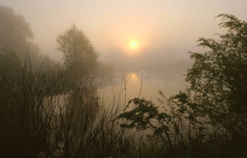 Mistige ochtend Dawn buiten de stad Het zal een warme dag zijn stock afbeeldingen