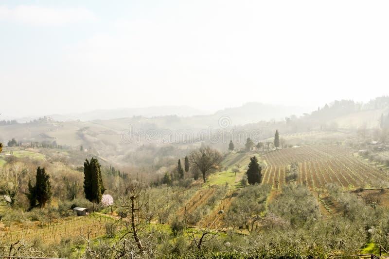 Mistige ochtend in de lente, Toscanië, Italië stock fotografie