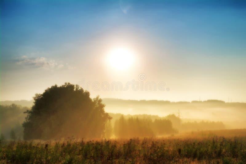 Mistige ochtend op het Russische gebied stock fotografie