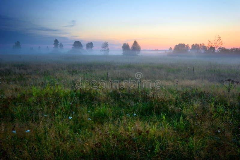 Mistige zonsondergang royalty-vrije stock afbeelding
