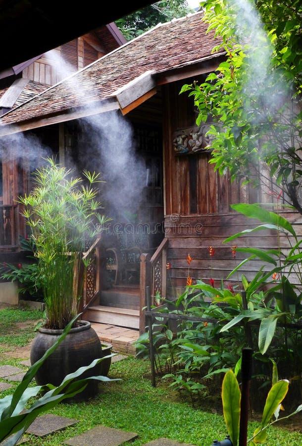 Misting tropical garden stock photos