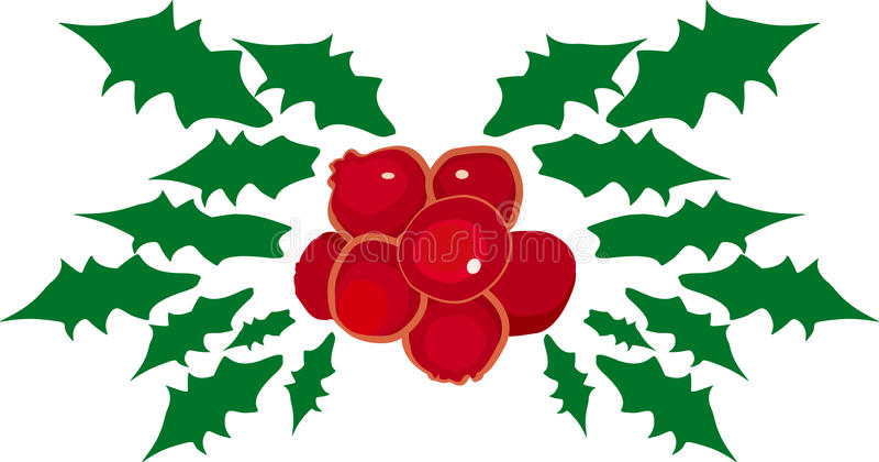 mistletoe royaltyfri bild