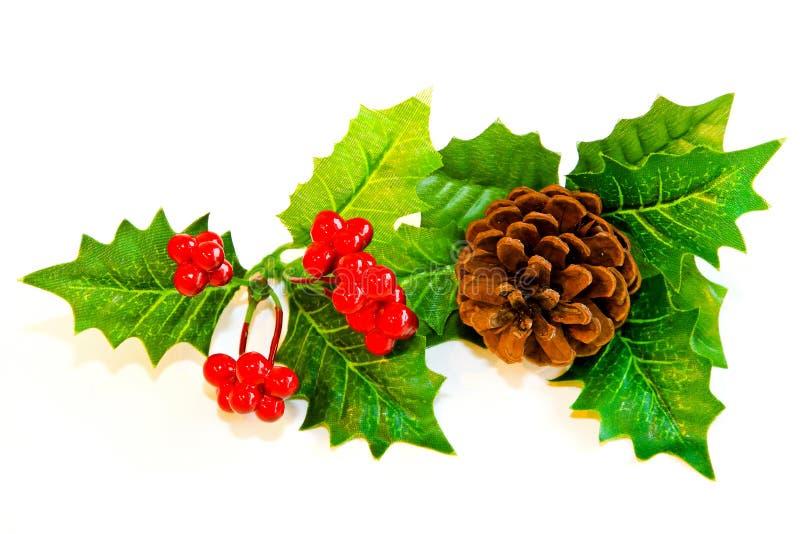 Download Mistletoe decoration stock photo. Image of background - 17265172