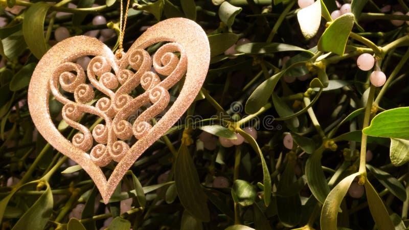 Mistletoe stock images