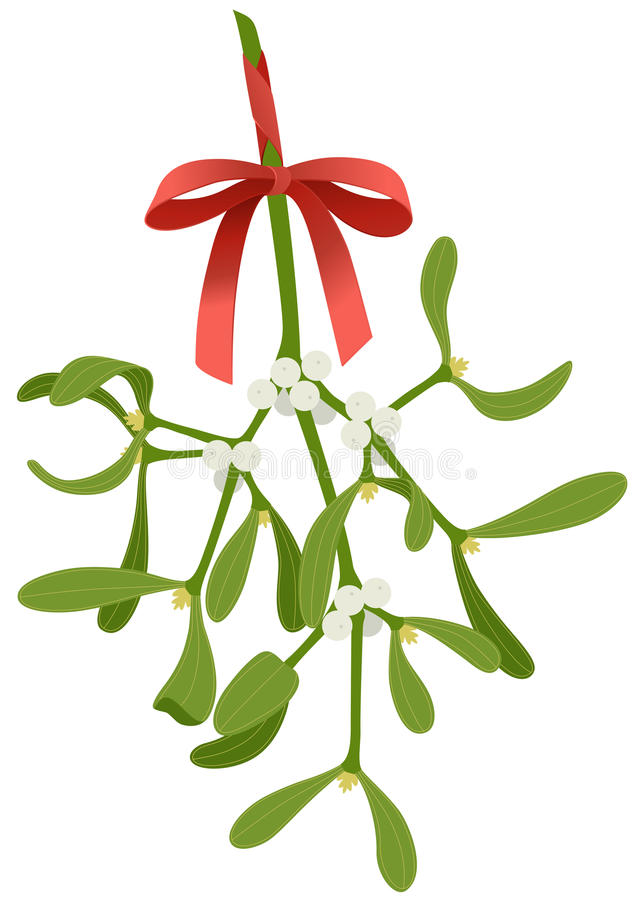 Mistletoe twig. Mistletoe with red bow isolated on white background royalty free illustration