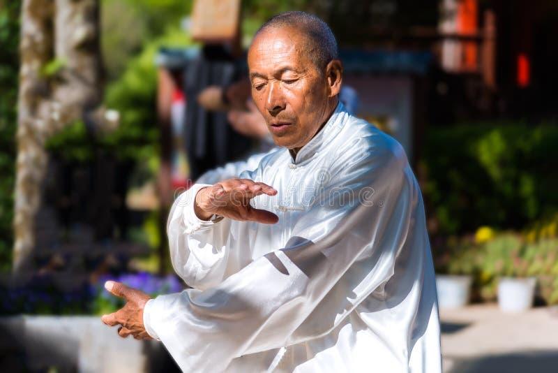 Mistrz Tai Chi w Jade Spring Park w Lijiang, Chiny obraz royalty free