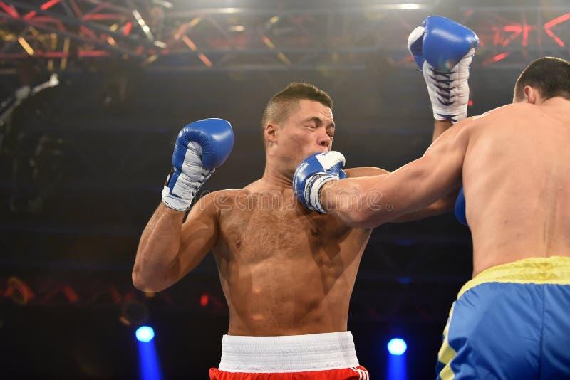 Mistrzostwa świata boks: Ukraina Otamans vs Brytyjski Lionhearts obrazy stock