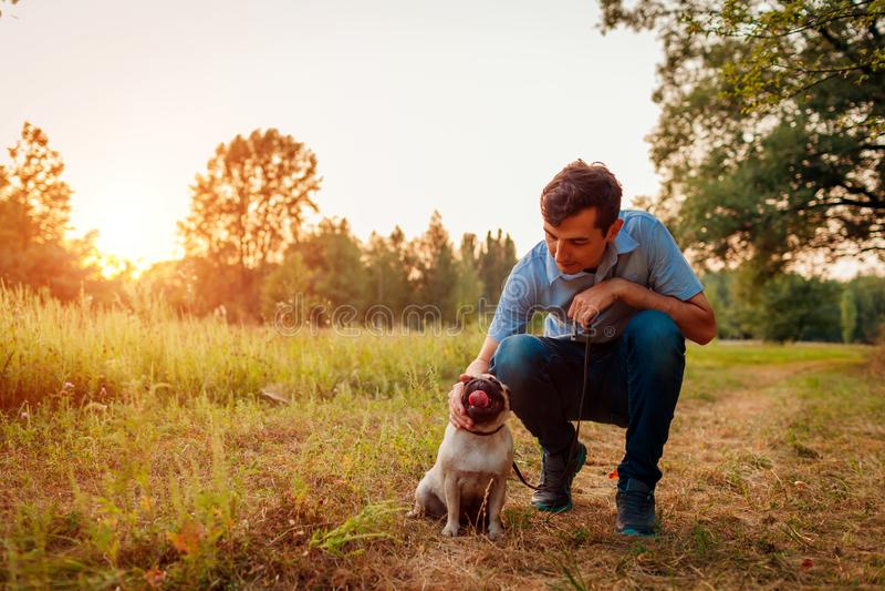 Mistrzowski odprowadzenia i przytulenia mopsa pies w jesień szczeniaka lasowym Szczęśliwym obsiadaniu na trawie pies psia miłość  obraz stock
