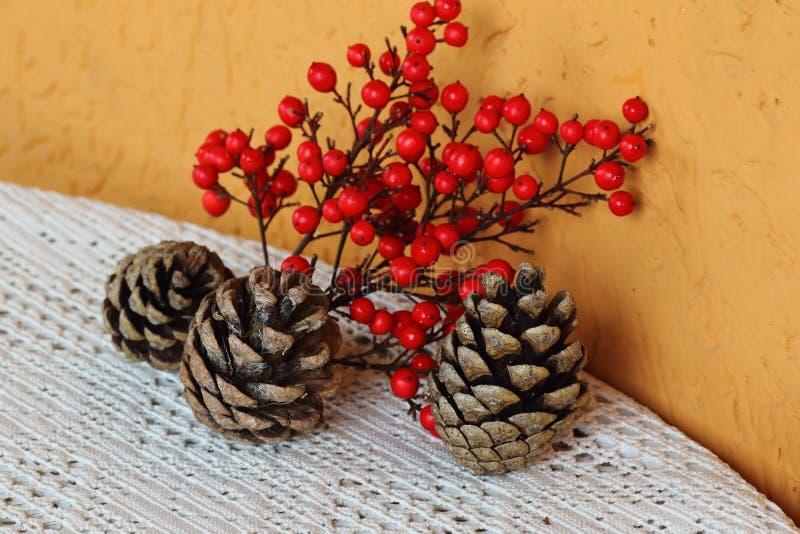 Mistura das cores da natureza no inverno imagens de stock royalty free