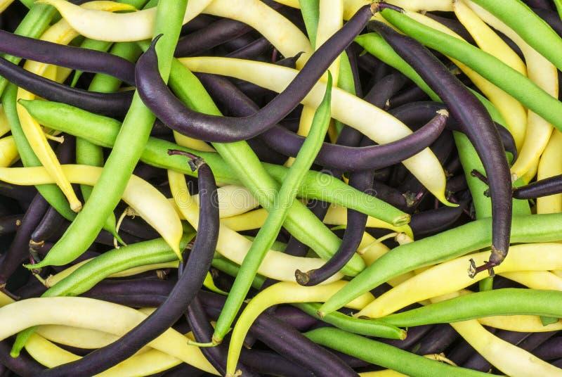 Mistura de feijões de cera verdes, amarelos e pretos foto de stock