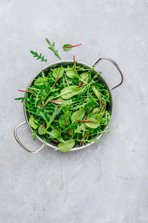 Mistura de folhas frescas com rúcula, alface, espinafre, beterrabas Ingredientes para a salada em um fundo de pedra cinzento imagem de stock