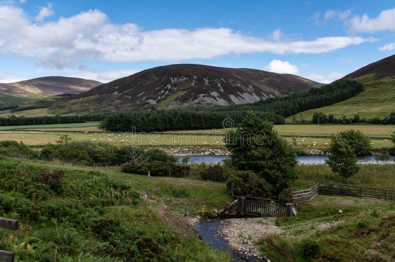 A mistura de lã do rio e os montes de Escócia fotografia de stock