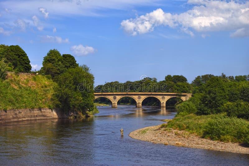 A mistura de lã do rio perto de Coldstream fotografia de stock