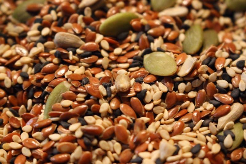Mistura de sementes de girassol verdes e de sementes de sésamo pretas e marrons como o fundo saudável do alimento do vegetariano imagens de stock