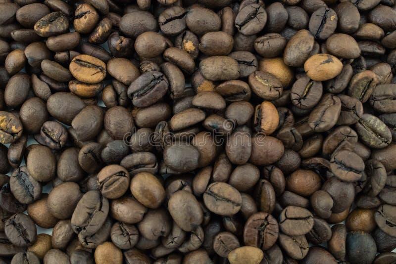 Mistura de tipos diferentes de feij?es de caf? roasted Fundo imagem de stock royalty free
