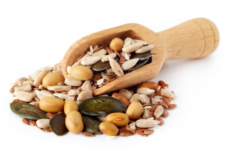 Mistura de várias sementes saudáveis imagens de stock royalty free