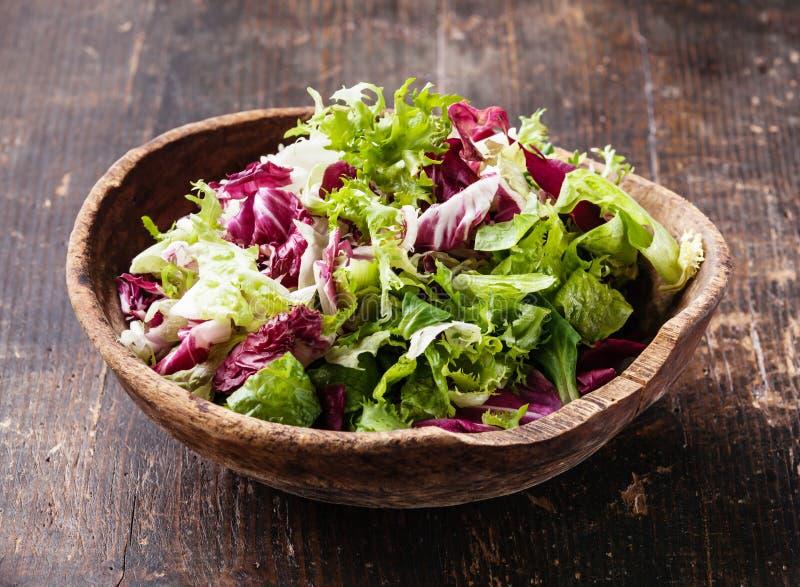 Mistura fresca das folhas da salada fotos de stock royalty free