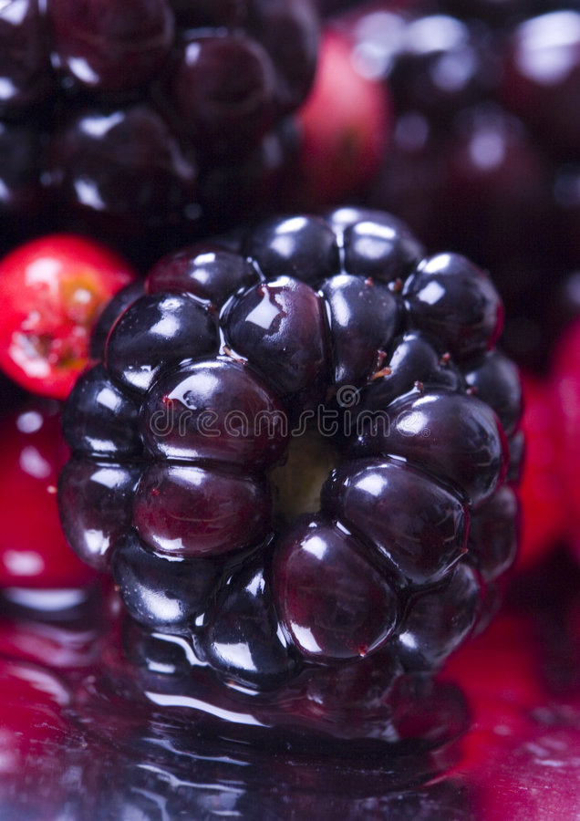 Mistura frutuosa fotografia de stock