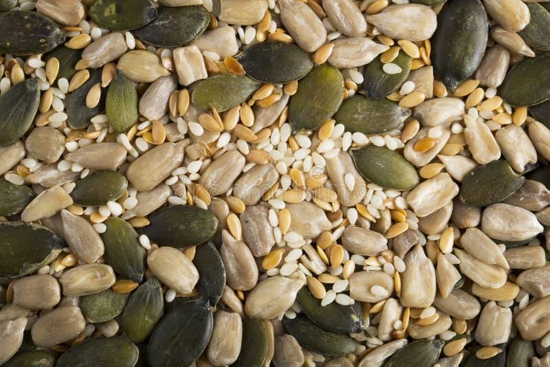 Mistura saudável da semente foto de stock royalty free