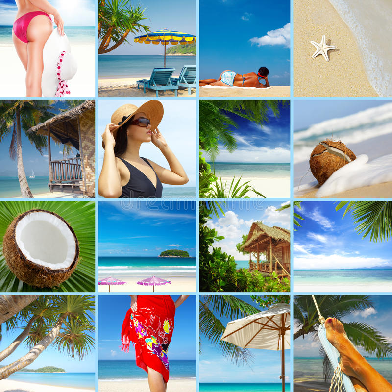 Mistura tropica fotografia de stock