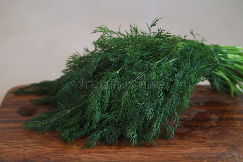 Mistura vegetal VII foto de stock