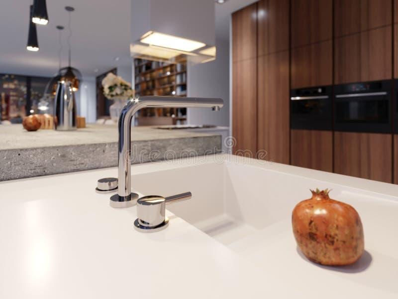 Misturador de aço moderno com um revestimento do cromo na cozinha contemporânea nova ilustração do vetor