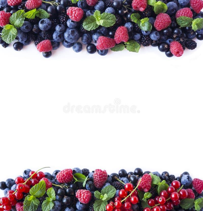 Misture bagas e frutos na beira da imagem com o espaço da cópia para o texto Mirtilos, amoras-pretas, framboesas e corintos madur imagem de stock royalty free