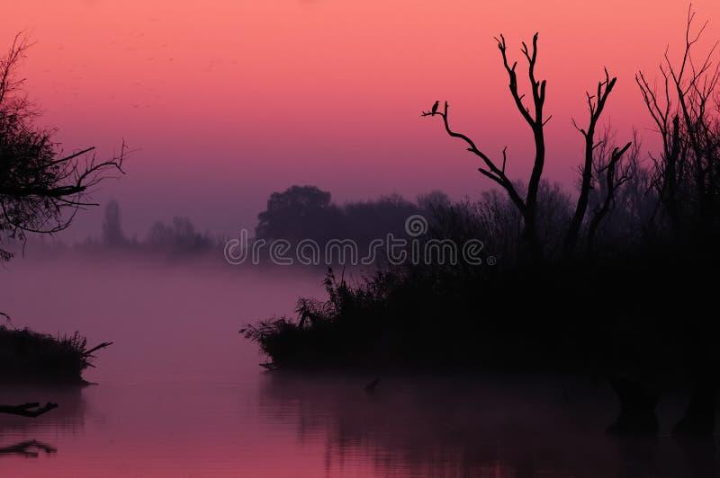 misty ανατολή διάθεσης στοκ φωτογραφίες