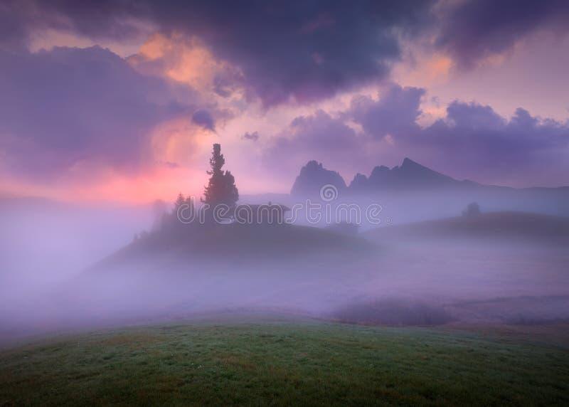 Misty ορεινές περιοχές δολομιτών στην όμορφη αυγή στοκ φωτογραφία