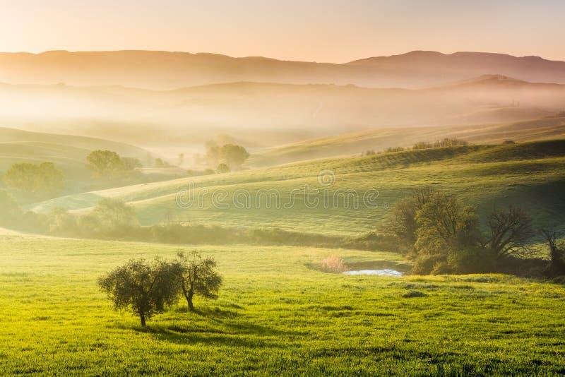 misty πρωί Τοσκάνη στοκ εικόνες